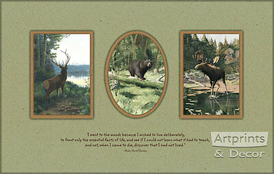 The Woods by Oliver Kemp (Art Print of Vintage Art)