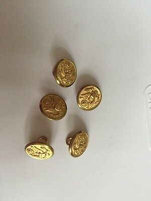 Air Force Vintage 1/2 Inch Brass Buttons Lot Of 5