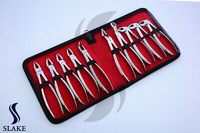 10 New Extracting Forceps Extraction Dental Instruments