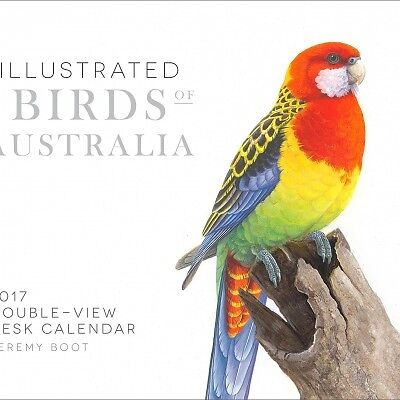 Illustrated Birds of Australia 2017 Desk Easel Calendar NEW by Browntrout