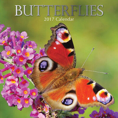 Butterflies 2017 Wall Calendar NEW by the Gifted Stationery