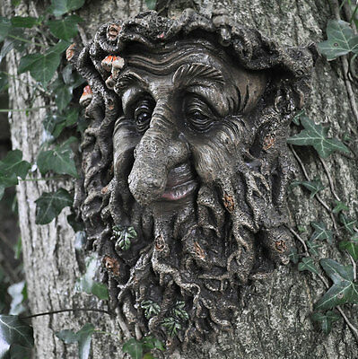 Man Of Forest GreenMan Tree Face Leaf Plaque Wall Garden Ornament NEW 39676