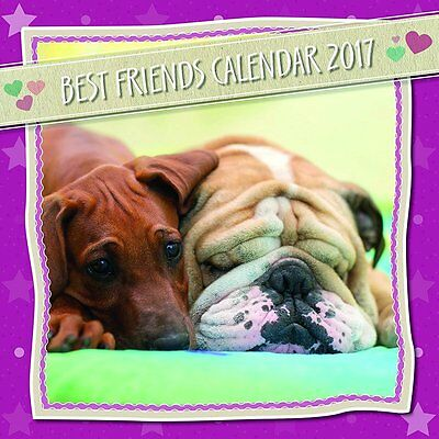 Best Friends 2017 Wall Calendar NEW by the Gifted Stationery