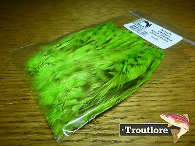 Charteuse Grizzly Variant Neck Hackle Hareline Dubbin - New Fly Tying Feathers