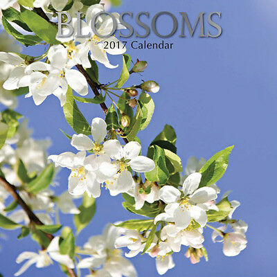 Blossoms 2017 Wall Calendar NEW by the Gifted Stationery
