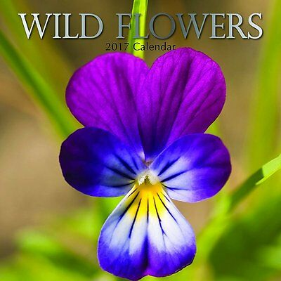 Wild Flowers 2017 Wall Calendar NEW by the Gifted Stationery