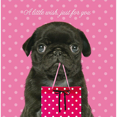 Black Pug Puppy A  Little Wish Birthday Greeting Card Animal Lovers