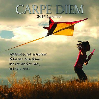 Carpe Diem 2017 Wall Calendar NEW by the Gifted Stationery