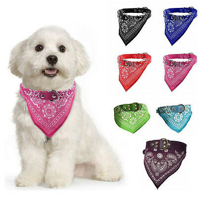 Cute Adjustable Pet Dog Cat Neck Scarf Bandana with Leather Collar Neckerchief