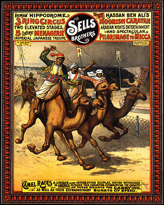 POSTER CIRCUS FAMOUS EDUCATED EQUINES HORSE PERFOMANCES VINTAGE REPRO FREE S//H