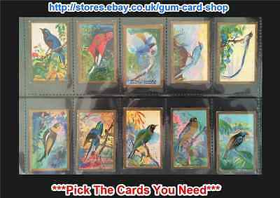 ☆ Cavanders - Foreign Birds 1926 (F) ***Pick The Cards You Need***