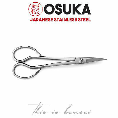 OSUKA Bonsai Trimming Scissors 180mm – Japanese Stainless Steel