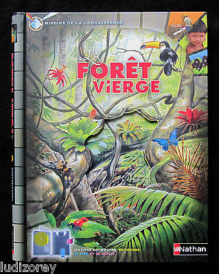 La Foret Vierge - Young - Livre Systeme Pop-Up Faune Animaux Tropique Canopee