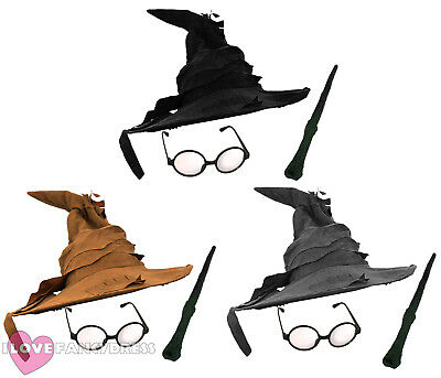 Wizard Hat Glasses And Wand Fancy Dress Costume Halloween Book Film Character