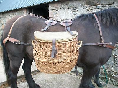 Antique Vintage Picnic Grouse Panniers Leather Harness Working Highland Pony