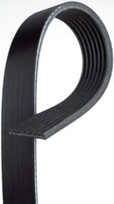 Gates V-Ribbed Belt 4PK1003