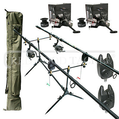Carp Fishing set up Lineaeffe 2 Rods Reels Bite Alarms Holdall Rod Pod