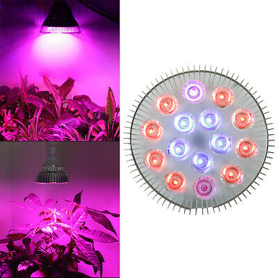 E27 54W Full Spectrum LED Plant Grow Light Hydroponic Indoor veg Flower Lamp