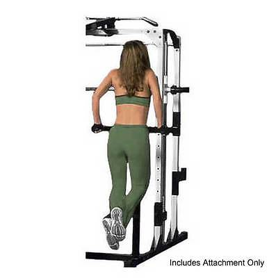 Yukon Dip Station Attachment Chest and Tricep Muscles