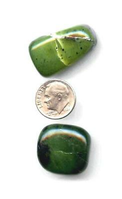 Serpentine Tumbled Stone Lot #5