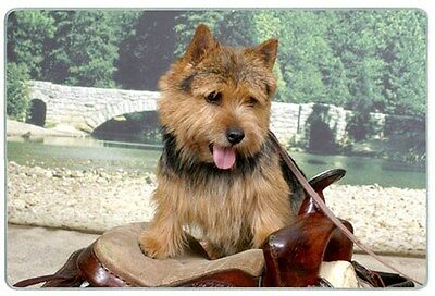 Norwich Terrier Cutting Board