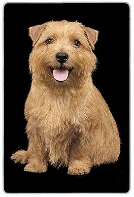 Norfolk Terrier Cutting Board