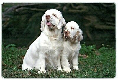 Clumber Spaniel Cutting Board