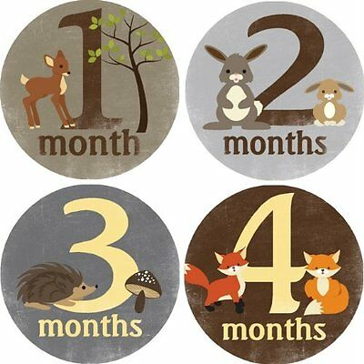Woodland Critters Monthly Baby Sticker Cute Easy Stick Thin Bodysuit Stickers