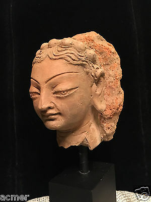 Authentic 8th Century A.D. Terracotta Head, Greco Buddhism Artifact of Kashmir