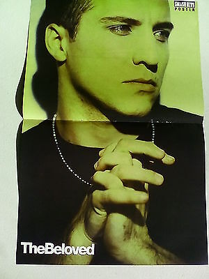 The Beloved / Shakespear Sister / Rebekah Elmaloglou   Double Page Poster  LMH94