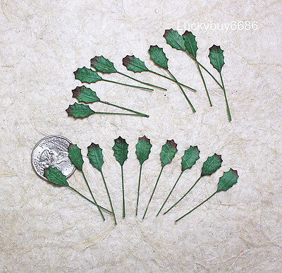 50mini Green Holly Leaves Christmas Leaf Scrapbook Craft Mulberry Paper Card