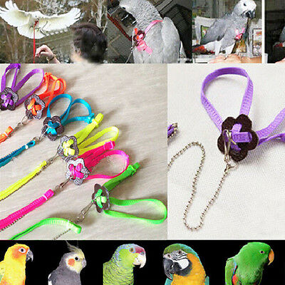 Parrot Adjustable Bird Harness and Leash Anti-bite Multicolor Light Soft New