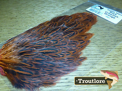 Crawfish Orange Hareline India Hen Back Soft Hackle New Fly Tying Cape Feathers