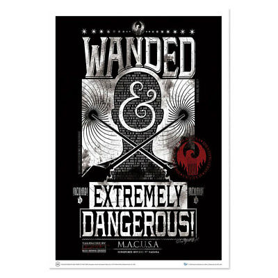 Fantastic Beasts and Where to Find Them: Wanded & Extremely Dangerous Art Print