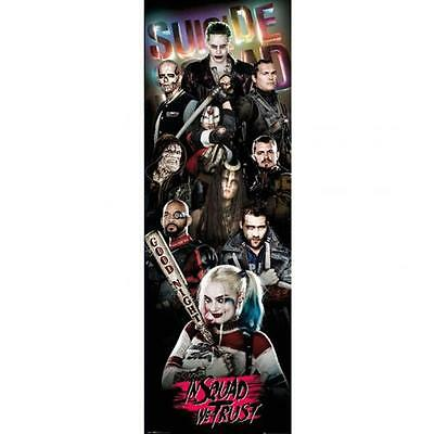 Official Licensed Product Suicide Squad Door Poster Group Harley Quinn Gift New