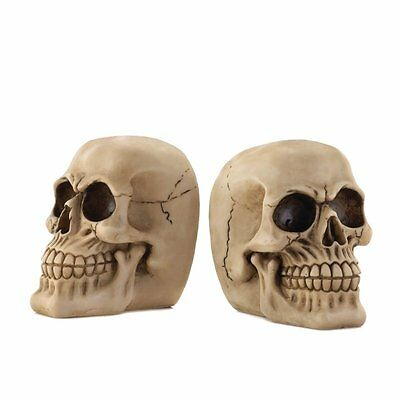 Zingz and Thingz Skull Bookends (Set of 2)