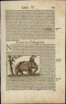 Elephant Asia Christian women riders c.1552 Munster print w/ orig. early color