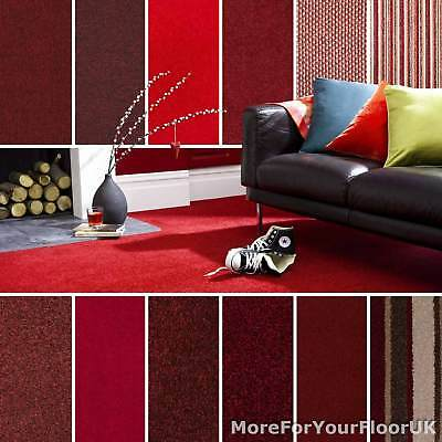 Red Carpet Cheap Red Carpets Loop Twist & Saxony Pile Red Wine Carpets Feltback