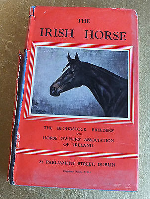The Irish Horse The Bloodstock breeders & Horse owners Association Ireland 1951
