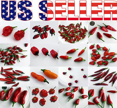 19 Varieties ORGANICALLY GROWN Hot Pepper Seeds Heirloom NON-GMO Rare  Exotic US