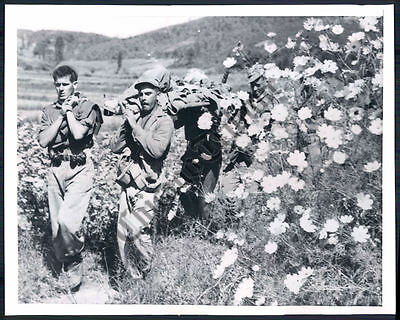 CT PHOTO atx-570 Canadian Army in the Korean War