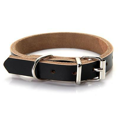 Leather Dog Pet Puppy Cat Collar Neck Black XS NEW