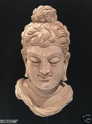 Authentic 6th Century A.D. Life Size Gandhara Buddha Head, Stucco