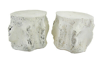Pair of Distressed Finish Whale Vertebra Bookends