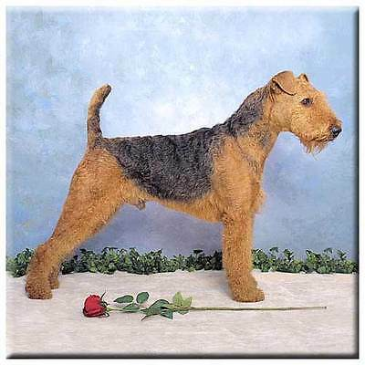 "Airedale Terrier 4"" Tile"