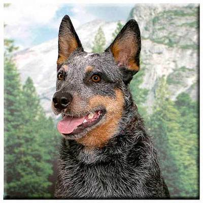 "Australian Cattle Dog 4"" Tile"