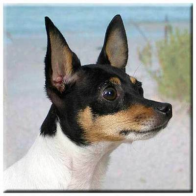 "Toy Fox Terrier 4"" Decorative, Cork Backed, Ceramic Tile"