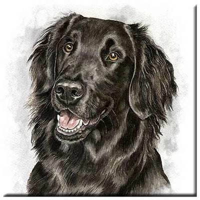 "Flat Coated Retriever 4"" Tile"