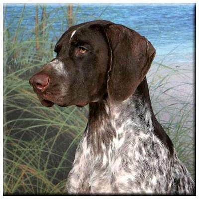 "German Shorthair Pointer 4"" Tile"