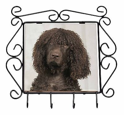Irish Water Spaniel Dog Wrought Iron Key Holder Hooks Christmas Gift, AD-IWSKH